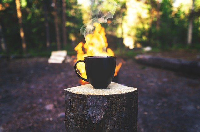 coffee cup on log in front of campfire in the woods on a beautiful morning